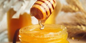 The present-day market is flooded with brands claiming to sell pure honey. Learn the different ways on how to test pure honey at home.